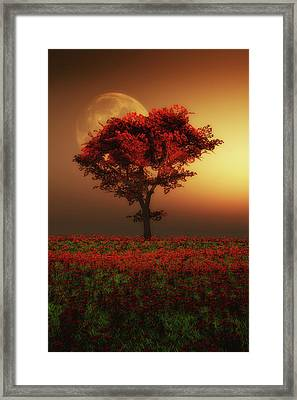 Red Tree In The Evening Framed Print