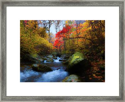 Red Tree In White Oak Canyon Framed Print