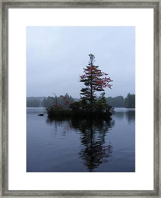 Red Tree Island Framed Print by Alison Heckard