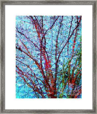 Red Tree Over Water Framed Print by Ann Johndro-Collins