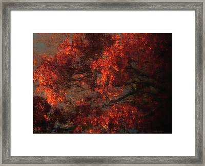 Red Tree Scene Framed Print by Mikki Cucuzzo