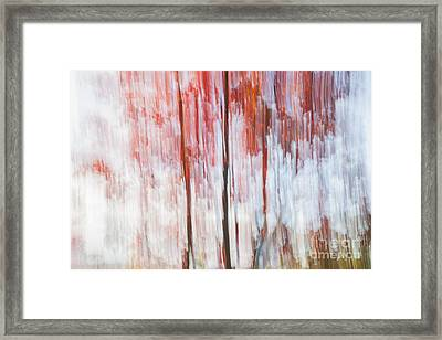 Red Trees By The Lake Framed Print