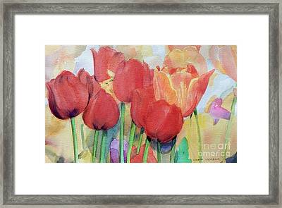 Red Tulips In Spring Framed Print