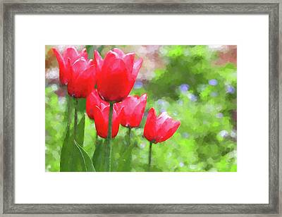 Framed Print featuring the photograph Red Tulips In The Spring Garden by Jennie Marie Schell