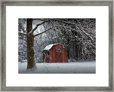 Red Utility Barn Among The Trees During A Snowstorm Framed Print by Randall Nyhof