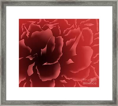 Red Velvet Peony Framed Print