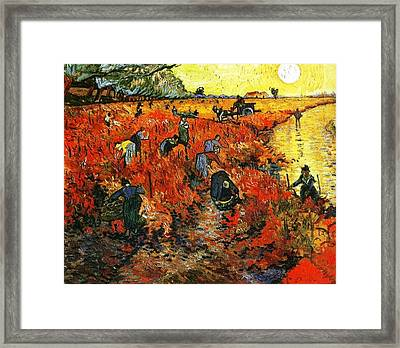 Red Vineyard Framed Print