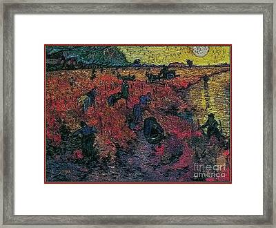 Red Vineyards  Framed Print