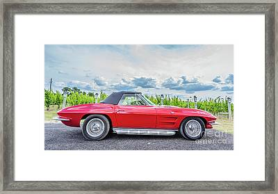Red Vintage Corvette Sting Ray Vineyard Framed Print by Edward Fielding