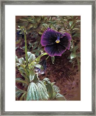 Red Violet Dew Framed Print