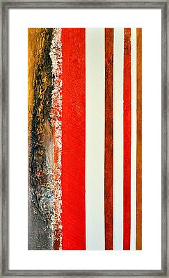 Red Vs Metallix Framed Print by Nicky Dou