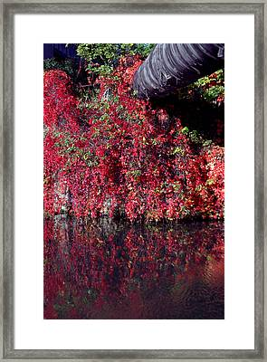 Red Waste Framed Print by Jez C Self