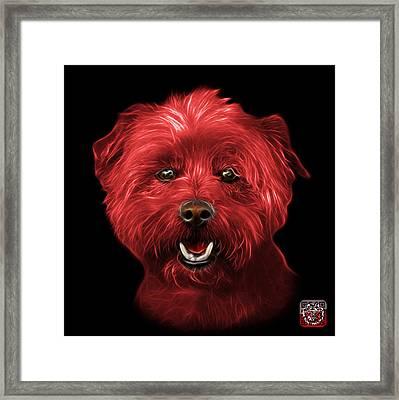 Red West Highland Terrier Mix - 8674 - Bb Framed Print