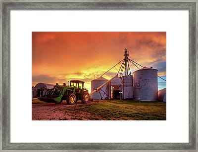 Red Wheat Seed Framed Print