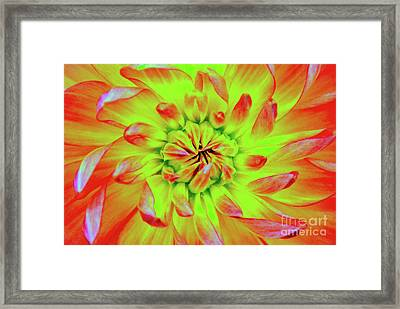 Red Whirl Framed Print