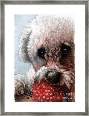 Red, White And Bella Framed Print by Karen Wheeler