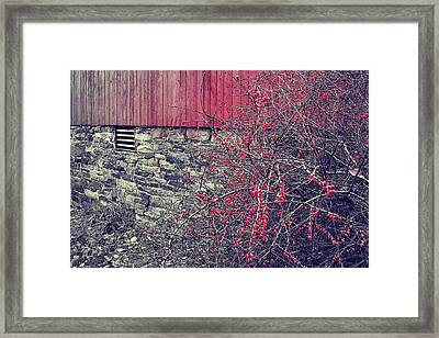 Red Winter Framed Print by JAMART Photography