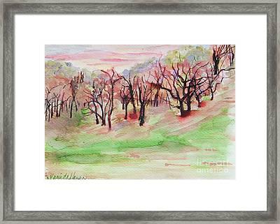 Red Woods Framed Print by Lucinda  Hansen