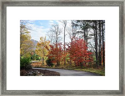 Red Yellow Path Framed Print