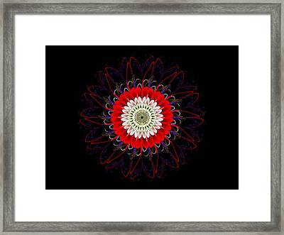 Red Zinnia Framed Print