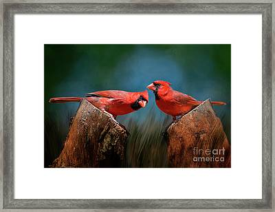 Framed Print featuring the photograph Redbird Sentinels by Bonnie Barry