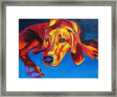 Redbone Coonhound Framed Print by Alicia VanNoy Call