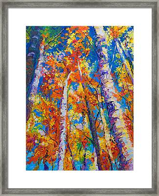 Redemption - Fall Birch And Aspen Framed Print by Talya Johnson