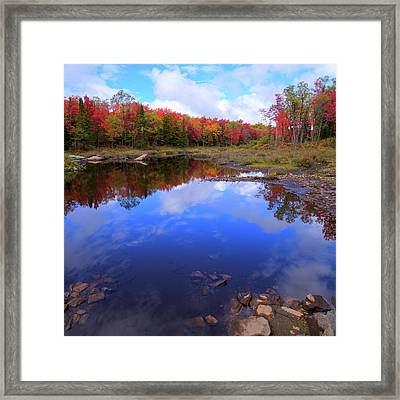 Reds Of Autumn Framed Print by David Patterson