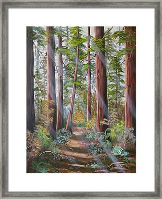 Framed Print featuring the painting Redwood Path by Joni McPherson