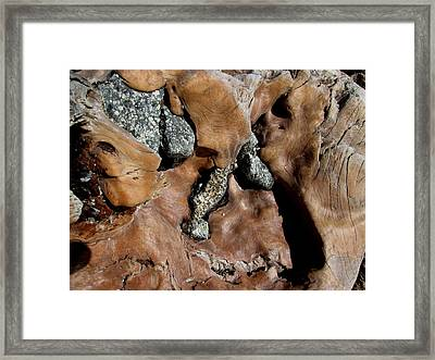 Redwood Stone Collage Framed Print