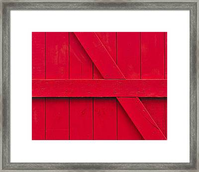 Redwood Framed Print by Tony Beck
