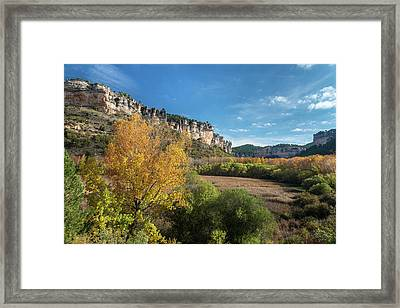 Reed Beds At Una Lake In Autumn, Serrania De Cuenca, Spain Framed Print by Peter Eastland