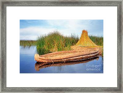 Framed Print featuring the photograph Reed Reflection by Nigel Fletcher-Jones