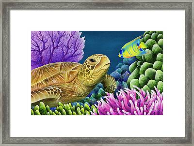 Reef Buddies Framed Print