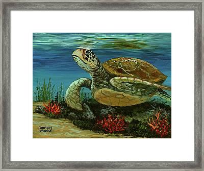 Framed Print featuring the painting Reef Honu by Darice Machel McGuire
