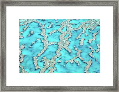 Framed Print featuring the photograph Reef Patterns by Az Jackson