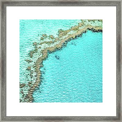 Framed Print featuring the photograph Reef Textures by Az Jackson