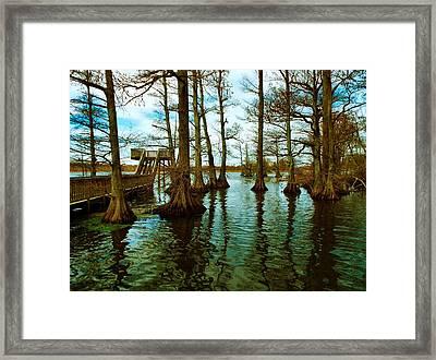 Reelfoot Beauty Framed Print