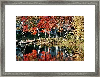 Framed Print featuring the photograph Reflected Beauty by Aimelle