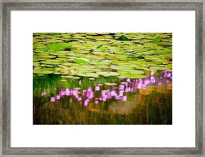 Reflected Flowers And Lilies Framed Print by Paul Kloschinsky