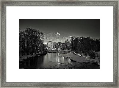 Reflected Grooming Framed Print