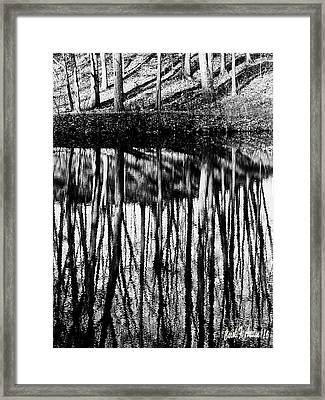 Reflected Landscape Patterns Framed Print by Carol F Austin