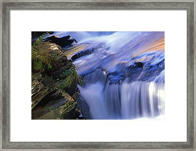Reflected Light On Fall Framed Print by Barry Shaffer