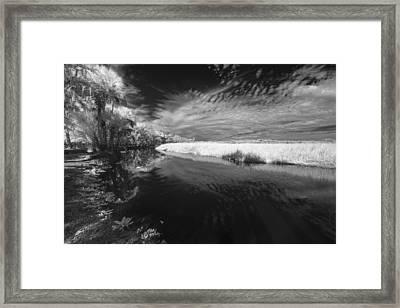 Reflected Palms On The Myakka Framed Print