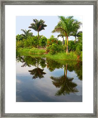 Framed Print featuring the photograph Reflected Palms by Rosalie Scanlon