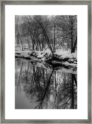 Reflected Trees Framed Print