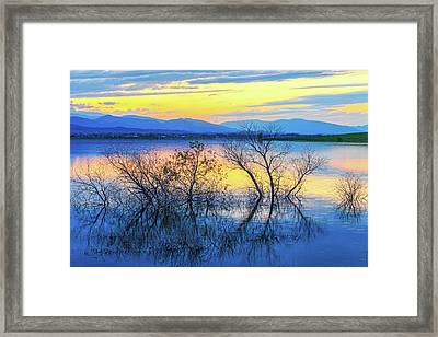 Reflecting At Sunset Framed Print by James BO Insogna