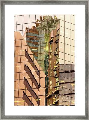 Reflecting Eagle 4 Framed Print