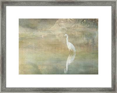 Reflecting Egret Framed Print by Sarah Vernon