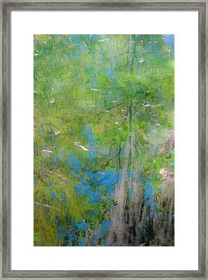 Reflecting On Abundant Humidity Framed Print by Sean Holmquist